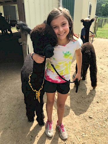 Caring for our sweet alpacas!